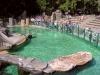 zoo_praha13-05